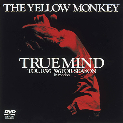 TRUE MIND TOUR '95〜'96 FOR SEASON in motion