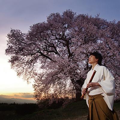 季(TOKI) -春-