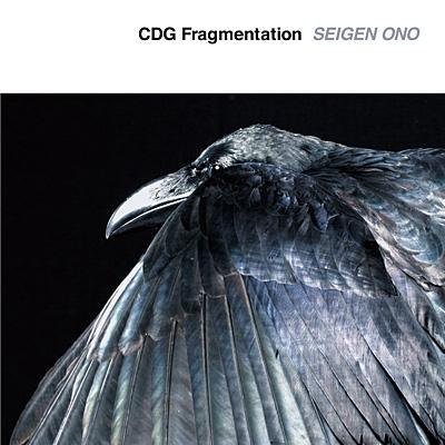 CDG Fragmentation【アナログ】
