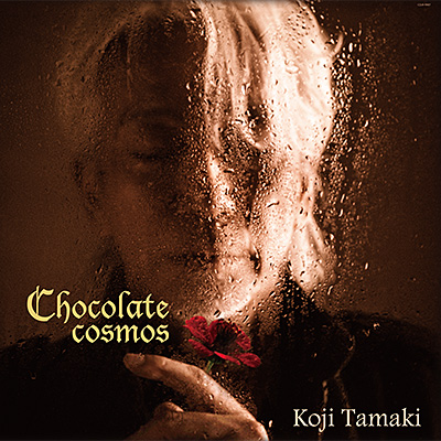 Chocolate cosmos【アナログ】