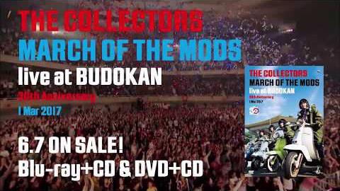 ザ・コレクターズ/『THE COLLECTORS live at BUDOKAN』トレーラー