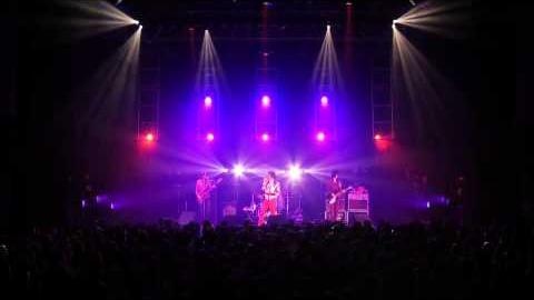 ザ・コレクターズ/『THE COLLECTORS TOUR 2013 MODTONE 』ダイジェスト映像