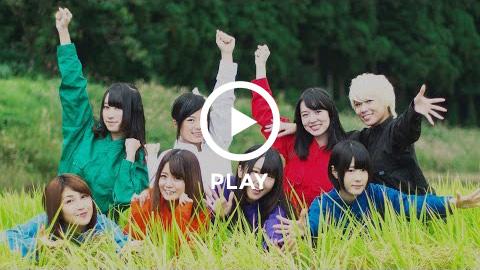 演歌女子ルピナス組/コシヒカリ音頭