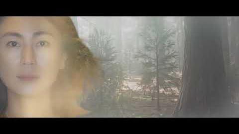 森を抜けて/
