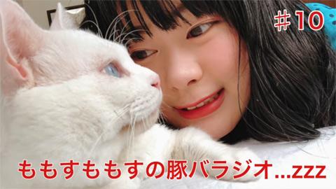 ももすももす/【#10】 第10回を祝いに猫が来た…zzz【ももすももすの豚バラジオ】