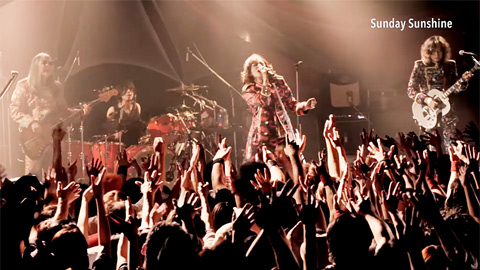 RED WARRIORS/『SWINGIN' DAZE 21st Century』ライブ映像トレイラー