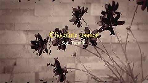 『Chocolate cosmos』MUSIC VIDEO/
