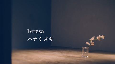 Teresa/ハナミズキ