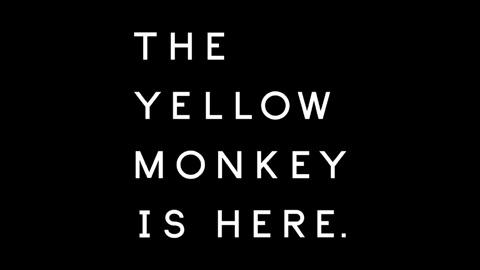 THE YELLOW MONKEY(ザ・イエローモンキー)/2017年 新曲「ロザーナ」ティザー