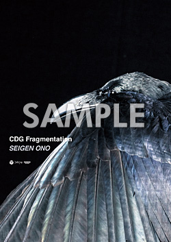 CDG Fragmentation B2ポスター
