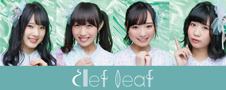 Clef Leaf(クレフリーフ)