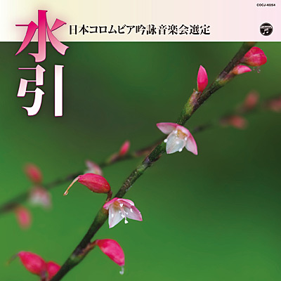 平成30年度(第54回) 日本コロムビア吟詠音楽会選定 水引
