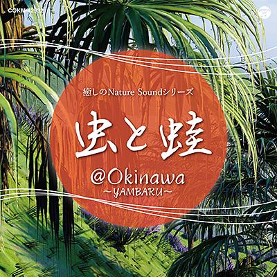 癒しのNature Soundシリーズ 虫と蛙 @OKINAWA 〜Yambaru〜/VA_OTHERS